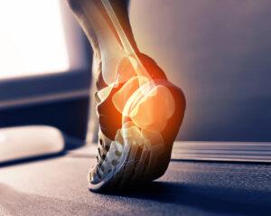 foot and bones